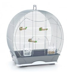 Pet Expert Colivie Special Small Silver