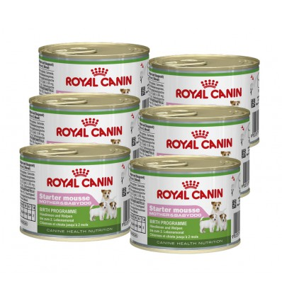 Royal Canin Starter Mousse, 6x195g
