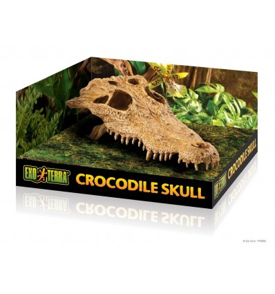 Hagen Exo Terra Decor Crocodile Skull