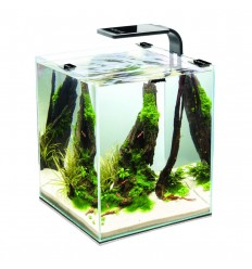 Aquael Acvariu Shrimp Smart, 30L