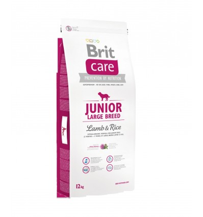 Brit Care Junior Large Miel & Orez 12kg
