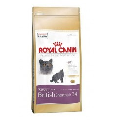 Royal Canin British Shorthair, 10kg